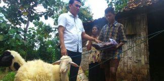 Cancoko, salah satu anggota dewan memberikan bantuan. (Musafa)