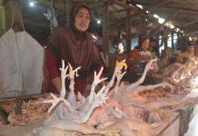 Ilustrasi penjual daging ayam di pasar baru Tuban. (Atmo)